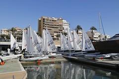 La Comunitat Valenciana Olympic Week corona hasta ocho campeones de la Copa de España