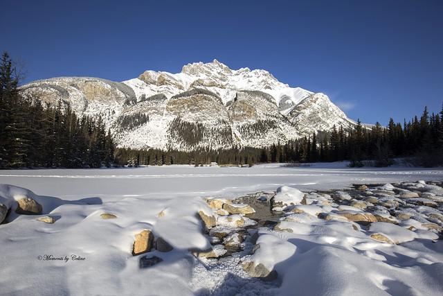 Frozen Cascade Views