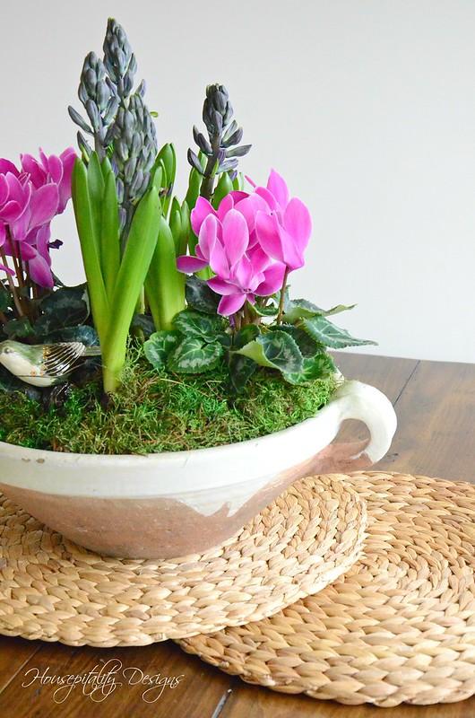 Dish Garden-Housepitality Designs-6