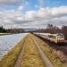 Along the Marne - Rhine canal (II)