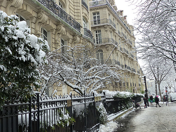 lamuette sous la neige