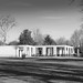 Chiswick House -42  16022018.jpg