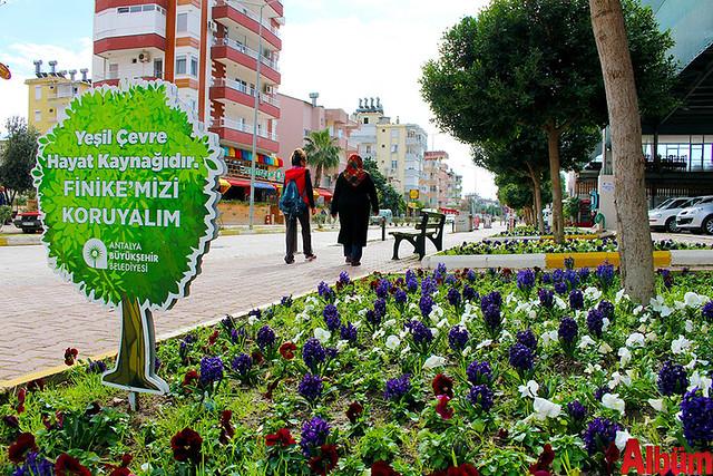 Finike'nin caddeleri çiçek açtı -5