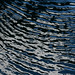 Ripples by laszlofromhalifax
