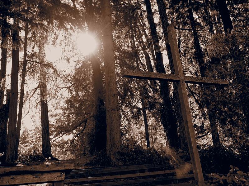 Camp Gwinwood Cross