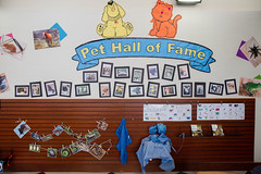 Pet Hall of Fame