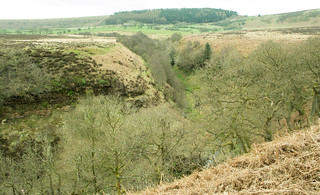 20170330-05_Wooded Valley on Levisham Moor