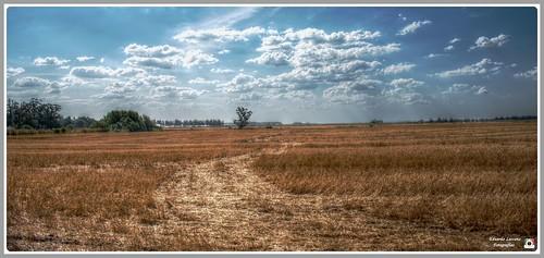campo y nubes