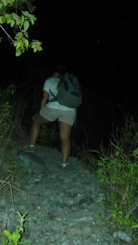 night trek