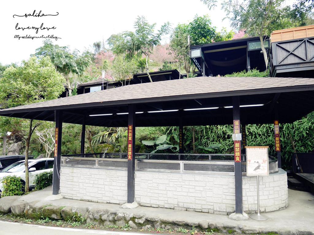 三峽一日遊景觀餐廳推薦花岩山林 (6)