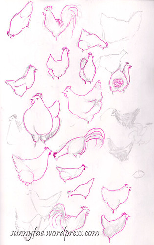rough chicken sketches