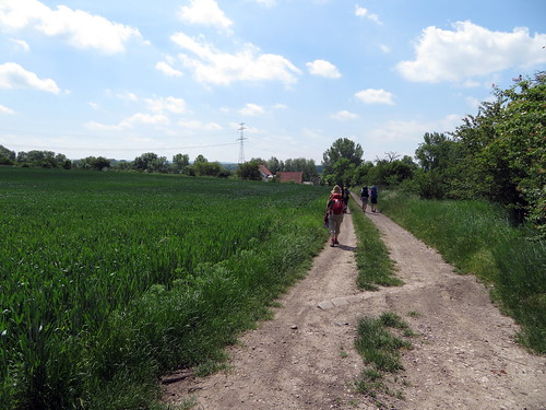 20170601 05 172 Regia Wolken Weg Feld Bäume Pilger ElisabethB Achim Sandra Stephi