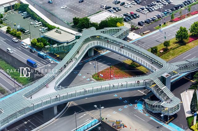 Footbridge, Tokyo, Japan