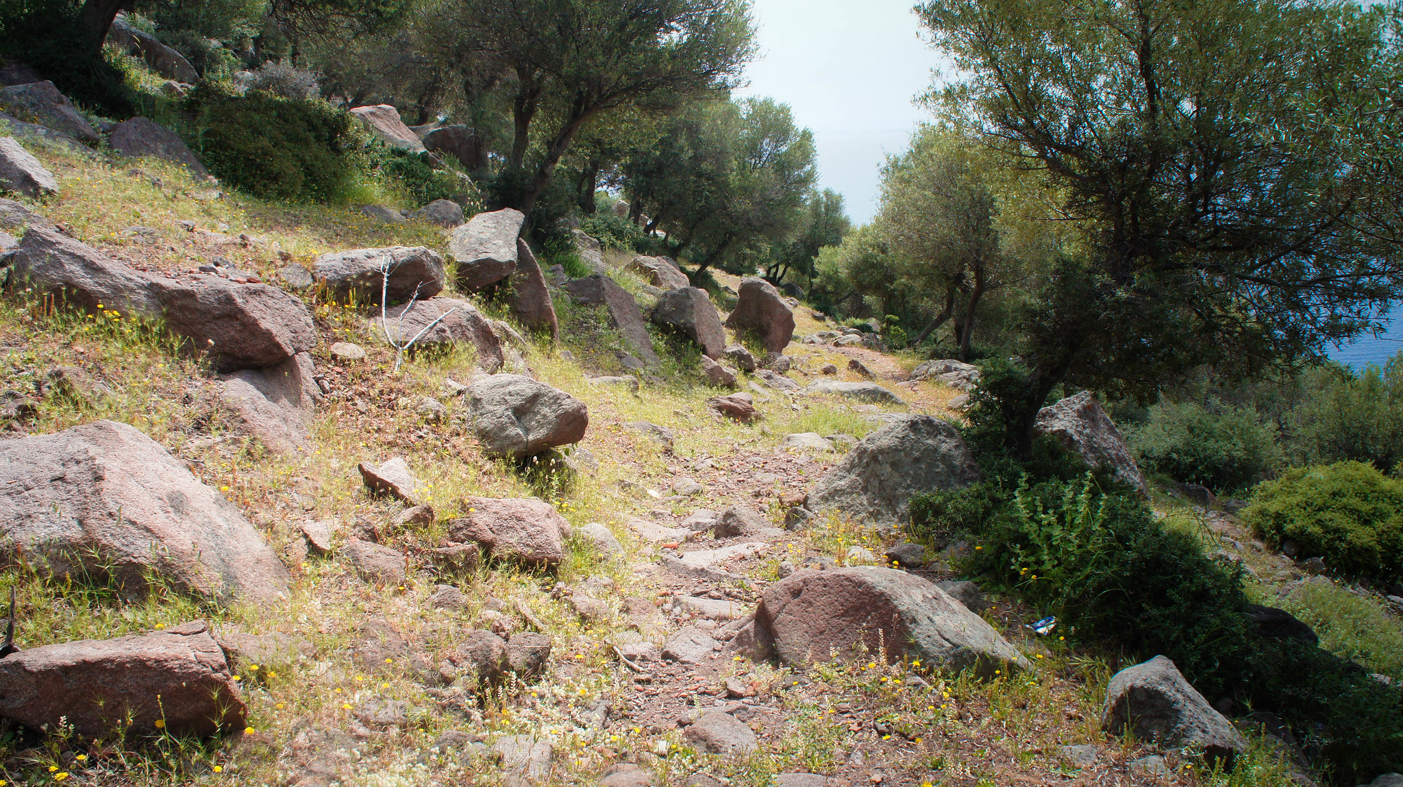 The ancient road to Assos.