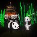 Pandas pavillion IMG_0985
