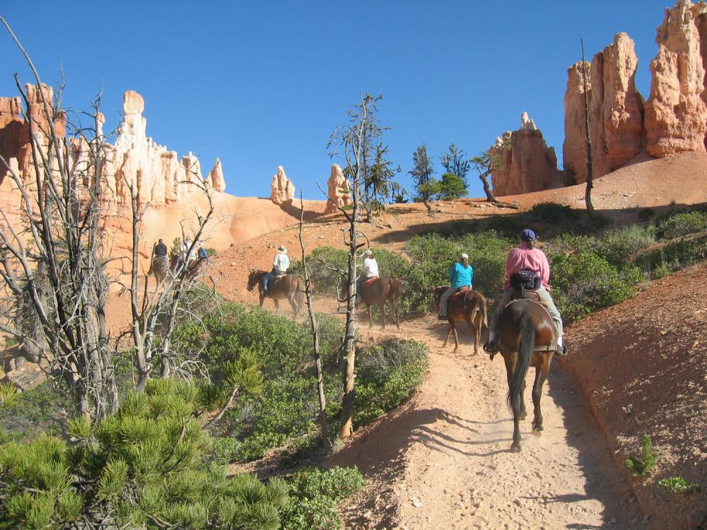 Horseback riders in Bryce Canyon