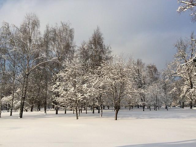 Petrovsky Park, Moscow, Feb.6