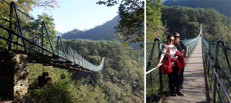 aowanda forest