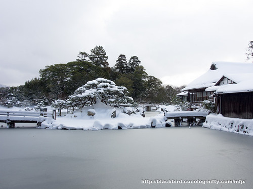 Snow day 20180125 #06