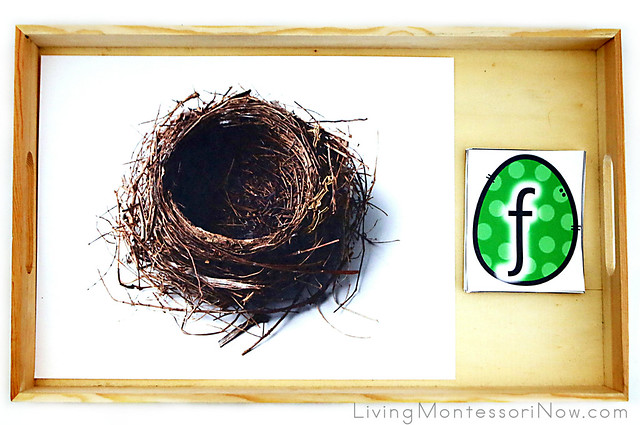 Nest and Egg Beginning Sounds or Word Building Activity