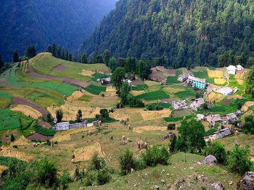 धौलकटिया गाँव