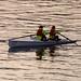 Rowing 18th November 2017 #2