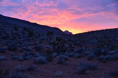 Las Vegas - Red Rock Purple sunset