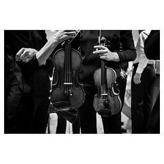 Sisterhood XPro2 . #xpro2 #fujixpro2 #fujifeed #fujifilm #fujilove #myfujilove #fujifilm_xseries #fujifilmusa #fujifilmnordic #fujifilmme #fujifilm_uk #twitter #geoffroyschied #violin #violinist #curves #behindthescenes @lucernefestival #blackandwhiteiswo