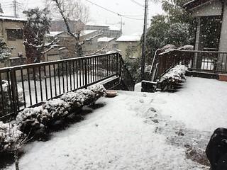 北風がこの街に雪を降らす