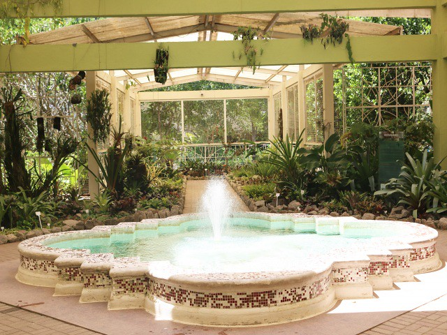jardim botanico 4 atractii turistice rio de janeiro