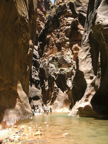 Near the entrance to Orderville Canyon in the Zion Narrows of Zion National Park, Utah