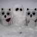 winter is snow fun by wwnorm