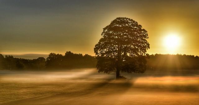 New dawn     Glazebury Cheshire uk