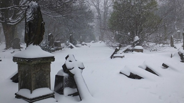 Boneyard in the snow 07