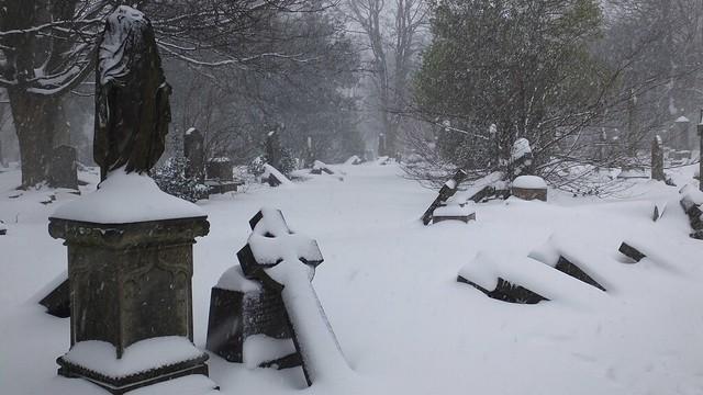 Boneyard in the snow 07