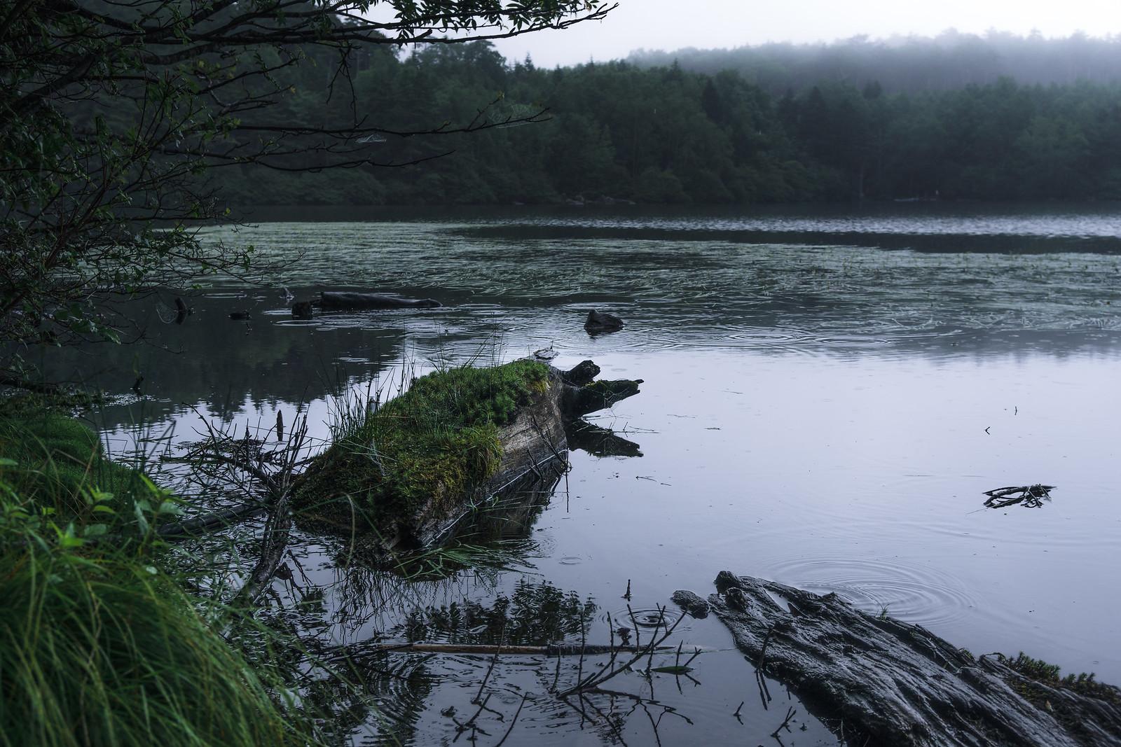 Foggy lake 3