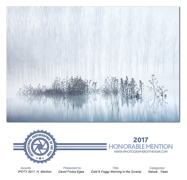 Honorable Mention IPOTY2017