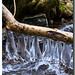 Grappes de glace