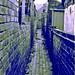 back alley _ callejon trasero