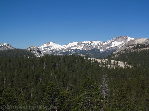 Fairview Dome (closer, left), Mt. Hofman (center / left), and Tuolumne Peak (right-ish) from Pothole Dome in Yosemite National Park, California
