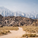 Small photo of Dirt road through the Alabama Hills