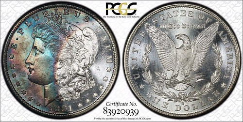 1881-S Morgan Toned PCGS MS65