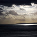 IMG_1304 - Isle of Purbeck - Dorset - 17.01.18