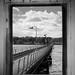 IMG_1901 - Hythe Pier - Southampton - 01.02.18