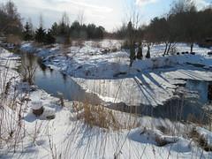 Harku järvel