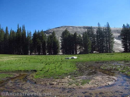 A small stream and Pothole Dome from near the parking area for Pothole Dome in Yosemite National Park, California