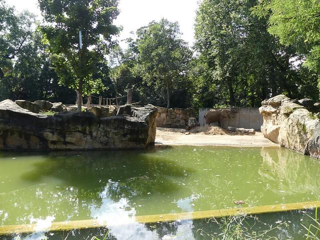 Elefantengehege, Zoo Dresden