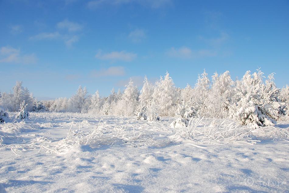 Eesti, Vabariik, 100, Estonia, birthday, Kaido Rummel, winter, scene