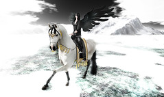 And I looked, and behold, a pale horse! And its rider's name was Death, and Hades followed him.
