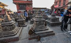 Monkey Temple, Swayambhunath, Kathmandu, Nepal.